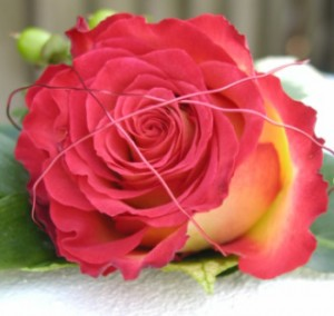 rose_wire_buttonhole