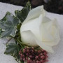 buttonhole with ivy